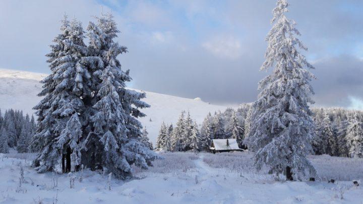Zimowe Roztocze – bajkowa kraina